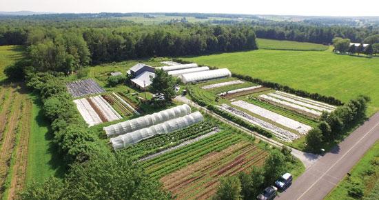 les-jardins-de-la-grelinett jpg.jpg